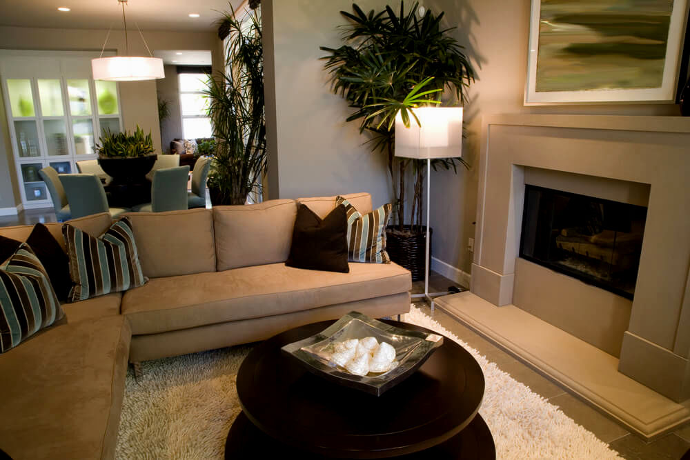 cute living room sofas picture-Cute Living Room sofas Construction