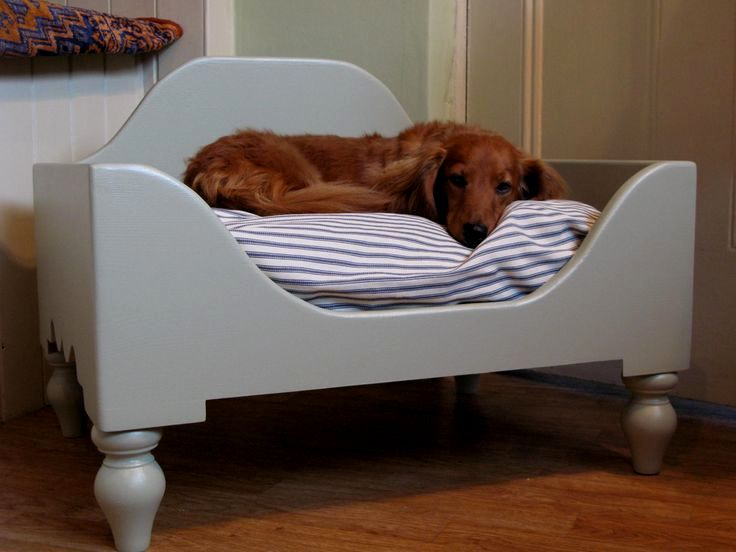 fascinating dog sofa bed décor-Cool Dog sofa Bed Architecture
