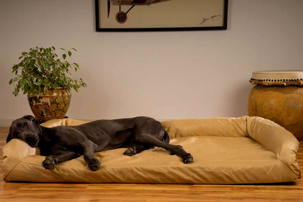 beautiful dog bed sofa picture-Luxury Dog Bed sofa Collection