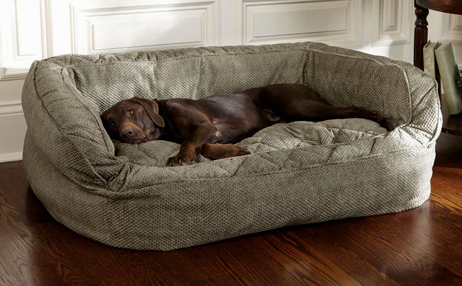 best dog bed sofa online-Luxury Dog Bed sofa Collection