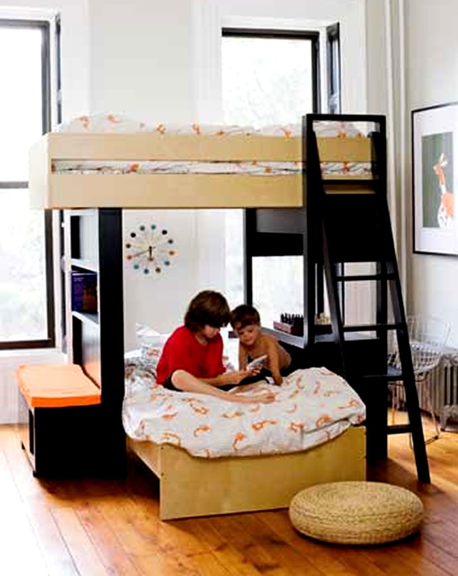 finest bunk bed sofa plan-Fresh Bunk Bed sofa Architecture