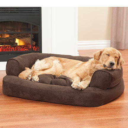 finest snoozer overstuffed sofa pet bed plan-Lovely Snoozer Overstuffed sofa Pet Bed Ideas