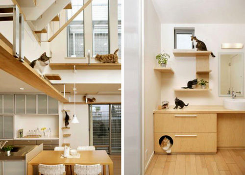 incredible cat friendly sofa inspiration-Latest Cat Friendly sofa Inspiration