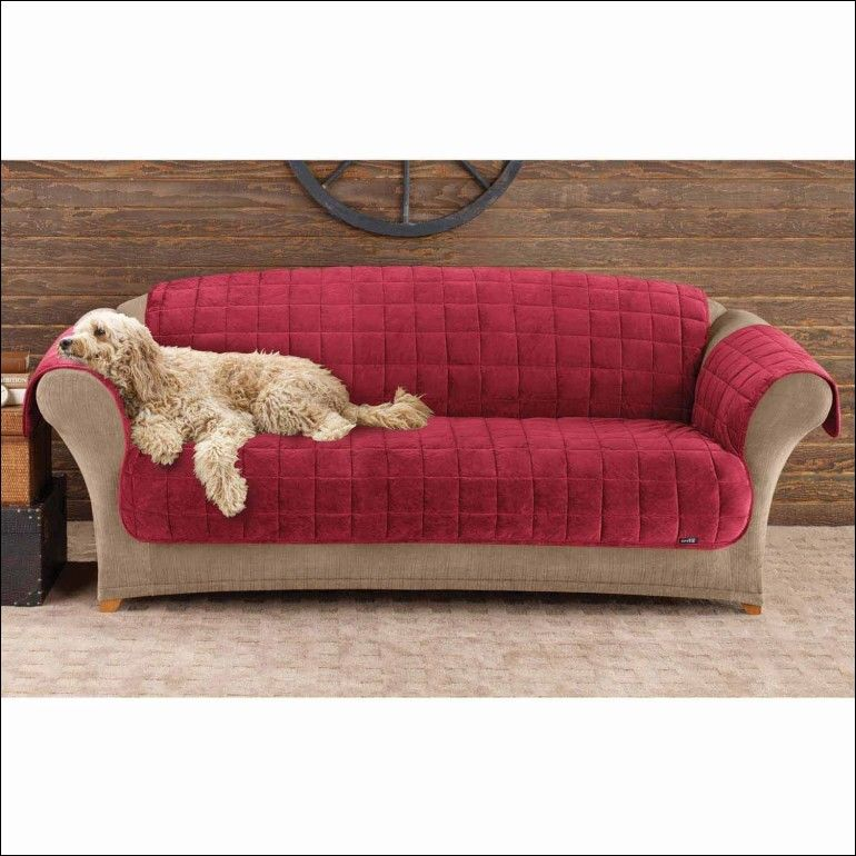 incredible pet covers for sofas pattern-Cool Pet Covers for sofas Layout