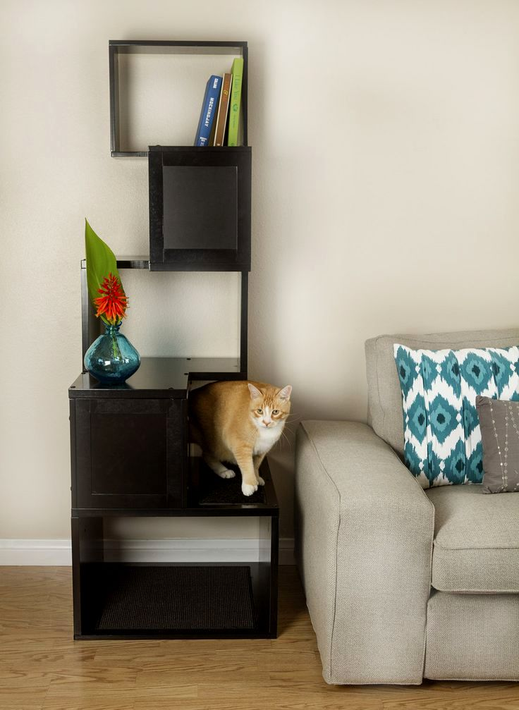 lovely cat friendly sofa layout-Latest Cat Friendly sofa Inspiration