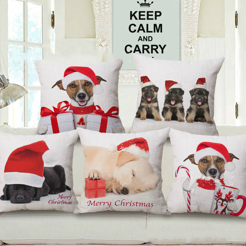 lovely pet covers for sofas décor-Cool Pet Covers for sofas Layout