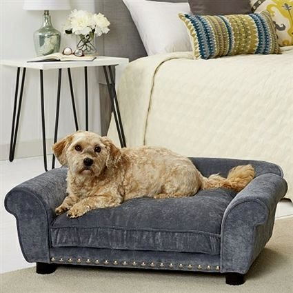 sensational dog bed sofa wallpaper-Luxury Dog Bed sofa Collection