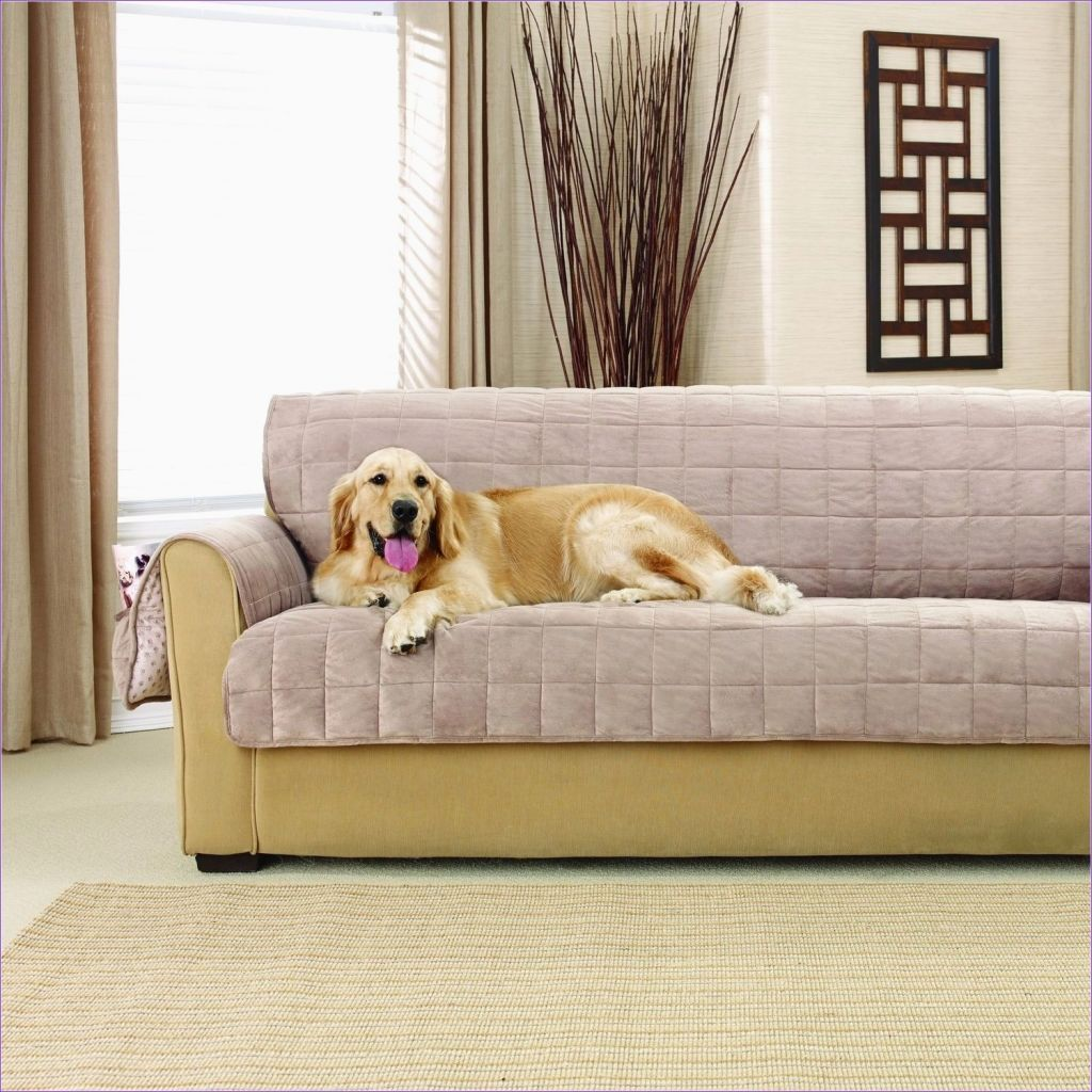 sensational sofa covers for pets pattern-Cool sofa Covers for Pets Wallpaper