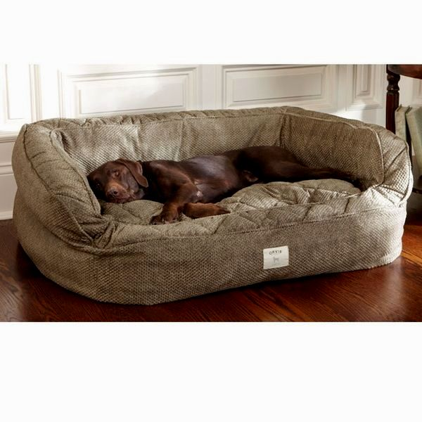 stunning dog bed sofa gallery-Luxury Dog Bed sofa Collection