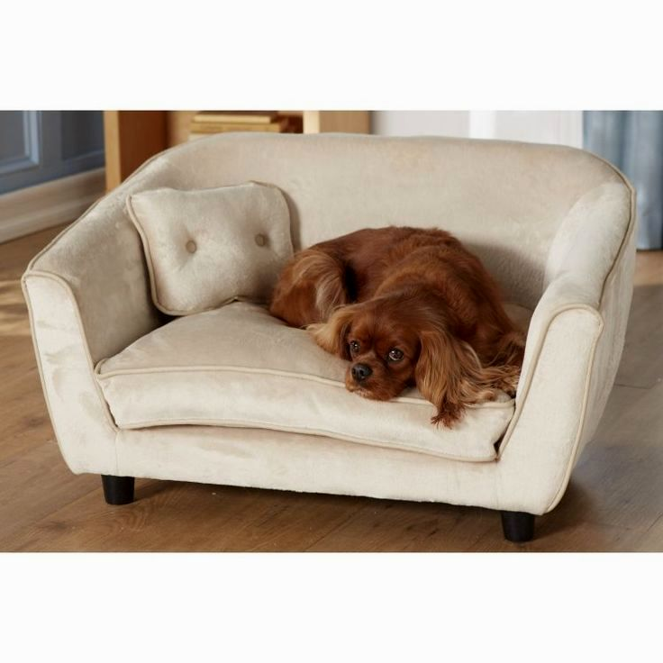 superb dog bed sofa photograph-Luxury Dog Bed sofa Collection