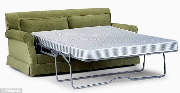 superb pull out sleeper sofa concept-Superb Pull Out Sleeper sofa Layout