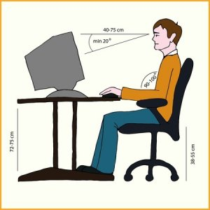 Ergonomic Desk Chair